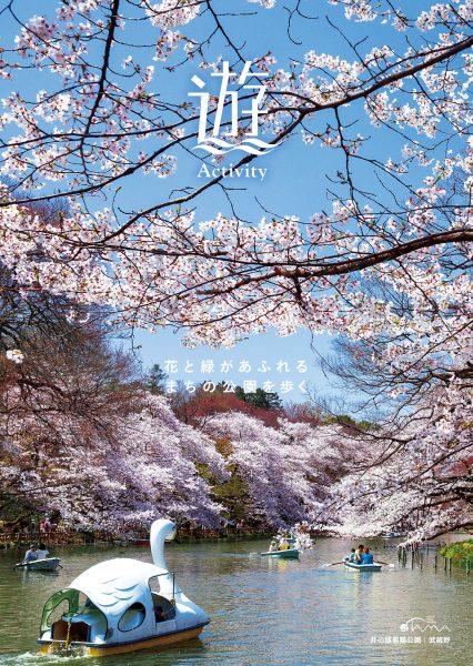 花と緑があふれるまちの公園を歩く