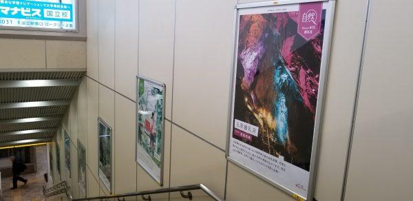 JR国立駅構内(上下線のホームに通じる階段)で観光図鑑(自然編)が掲示されています よろしければご覧ください(4/30までの予定)