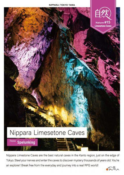 Nippara Limesetone Caves