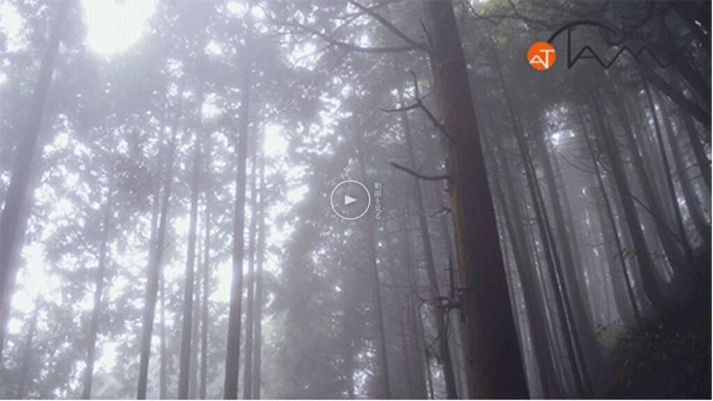 「多摩の山」動画をアップしました!